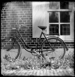 wet-plate-43-002-small