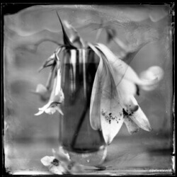 wet-plate-58-002-rev-small