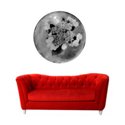 couch+rond