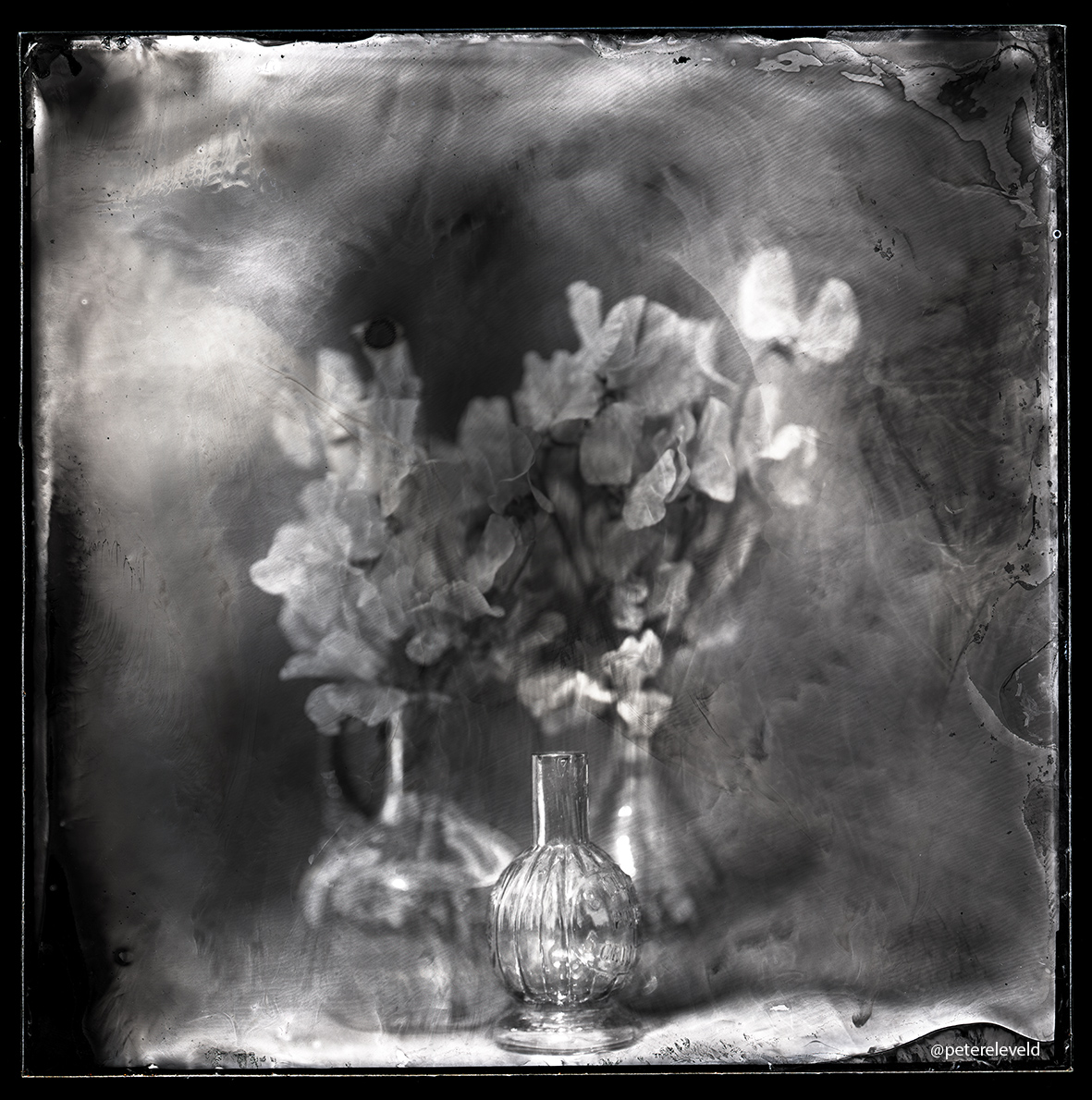 WetPlate photography with piano music.